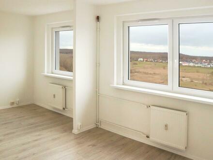 *Erstbezug nach Sanierung! Große 2-Raum-Wohnung, mit Rabatt mieten!*