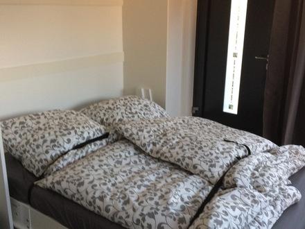 Apartment in Rüsselshiem