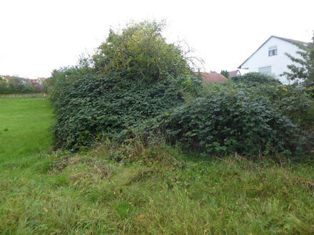 ARNOLD-IMMOBILIEN: Grundstück für 2-FMH in Feldrandlange