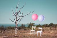 Immobilie im Scheidungsfall. Trautes Heim, Glück (auch) allein?