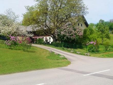 Bauernsacherl Naturgenuss - Zweitwohnsitz möglich