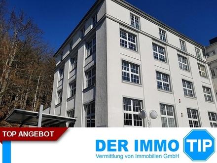 Hallenteilfläche in Chemnitz Einsiedel zur MIETE - beheizbar, Glasfaseranschluss