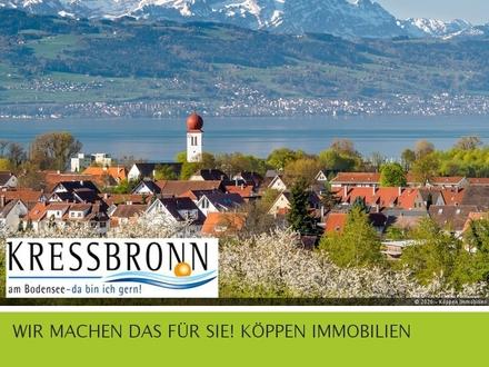 Exklusive Maisonette-Wohnung mit Berg und Seeblick in Kressbronn am Bodensee