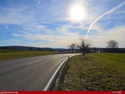 Barrierefrei zwischen Pforzheim und Stuttgart