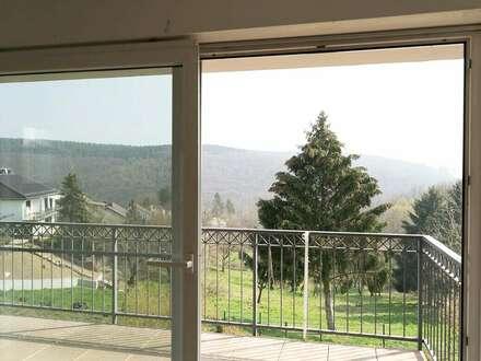 ETW in Eltville Rauenthal mit Panoramablick