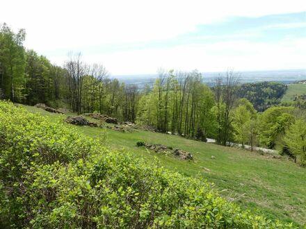 2 Häuser, Scheune und die schönste Aussicht der Ferienregion Sonnenwald !