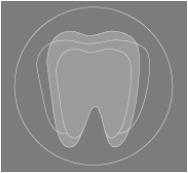 Zahnarztpraxis-Toma