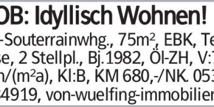 2-Zi-Souterrainwhg., 75m², EBK, Terrasse, 2 Stellpl., Bj.1982, Öl-ZH, V:73...