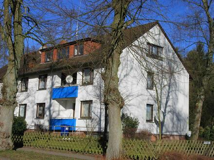 Helle Balkon-Wohnung im OG. Mit EBK, Kellerraum und neuem Bad.