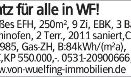 Großes EFH, 250m², 9 Zi, EBK, 3 Bäd., Kaminofen, 2 Terr., 2011 saniert,Carp.,...