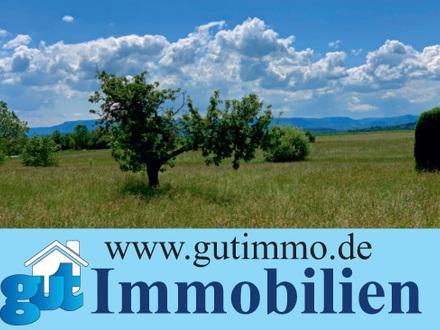 """Toplage Filderstadt: """"Wohnen angrenzend zur Natur und fantastischer Fernsicht!"""". Moderne DHH."""