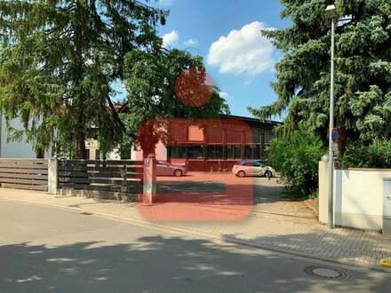 Absolute Rarität! Großes Grundstück in bevorzugtem Stadtteil Hochheim