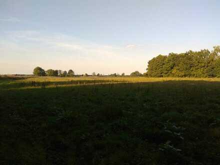 Grünland ca. 2,28 ha am Waldrand bei Reichertshofen