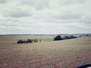Verkauf - Ackerfläche 1 ha