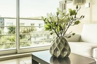 Urban Jungle - Wohnen mit Pflanzen