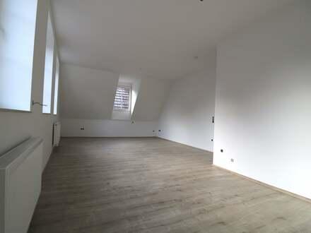 **Neu Sanierte 4-Zimmerwohnung mit gehobener Innenausstattung**