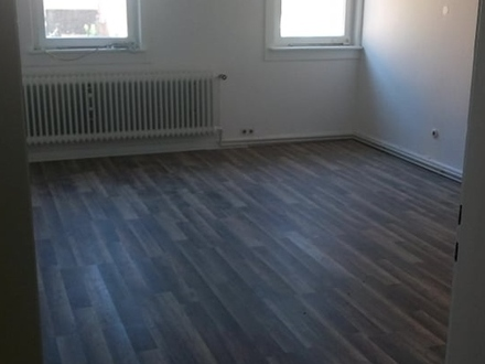 Helle, neu renovierte, 2 ZKB Wohnung zu vermieten