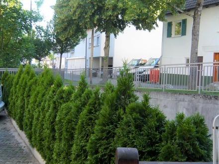 ///// Kleines, schnuckliges Stadthaushaus in idyllischer Lage /////