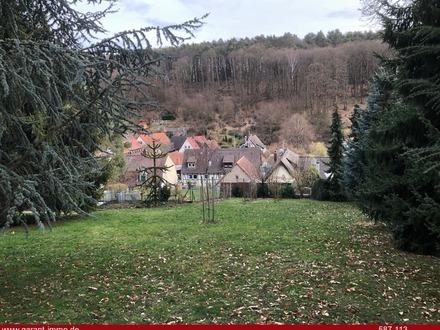 Bauen in Dörrenbach - dem Dornröschen der Pfalz