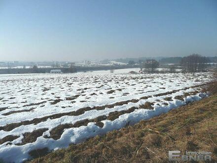 Landwirtschaftliche Fläche / Acker in Schwarzach bei Niederwinkling