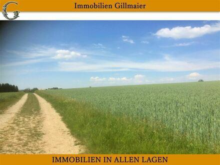 Immobilien Gillmaier - 17 Hektar gutes Ackerland auf 5 Flurnummern unterteilt!