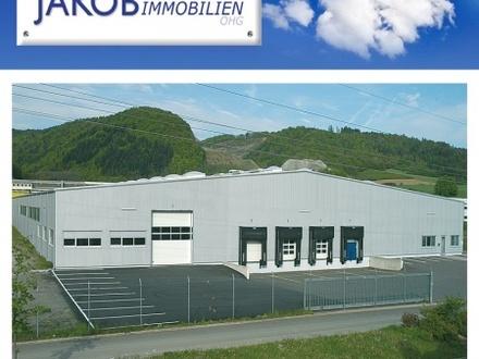 5200 m² Hallenfläche für Lager oder Produktion!