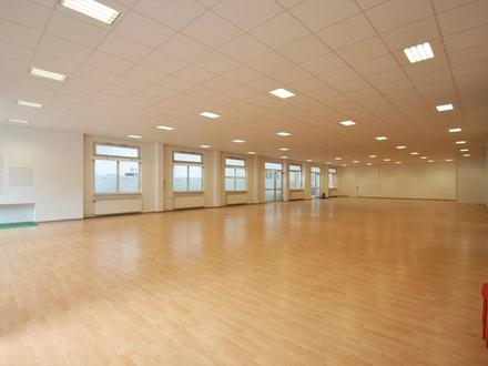 Gewerbehalle mit flexiblen Nutzungsmöglichkeiten auf 380m² - auf der Hanauer Landstr in Frankfurt