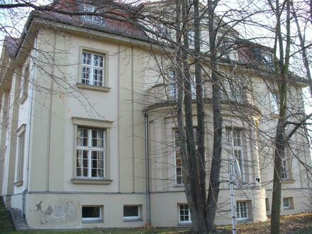 Villa mit großem Grundstück - schöne 4 Raum Wohnung mit viel Platz zu vermieten