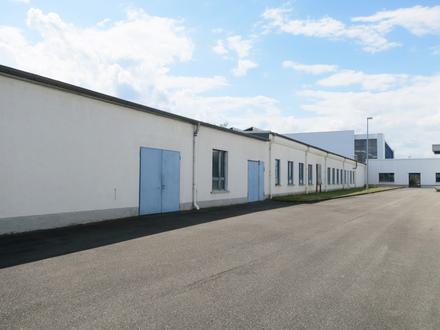 Etwa 5 min zur A4: Gewerbehalle mit ca. 9.130 m² Nutzfläche in Glauchau zum Kauf!