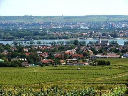 Bestens eingeführtes, umsatzstarkes Restaurant im mittleren Rheingau
