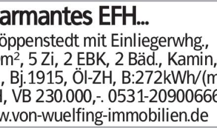 Schöppenstedt mit Einliegerwhg., 180m², 5 Zi, 2 EBK, 2 Bäd., Kamin, 2 Grg.,...