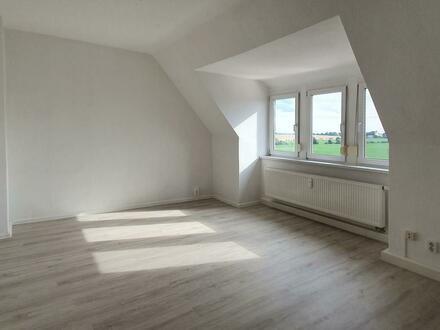 Einziehen und wohlfühlen***neu renovierte 2-Zimmer-Wohnung