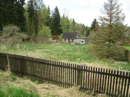 Gartengrundstück direkt am Forst