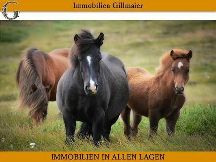 Immobilien Gillmaier - Rottaler Dreiseithof mit ca. 17.000 m² Grund direkt am Hof!!
