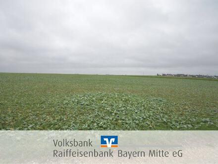 Landwirtschaftsfläche im Gebotsverfahren