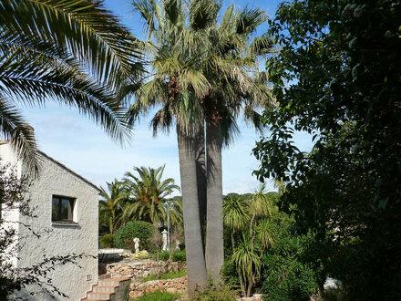Neo-provenzalische Villa mit Nebenhaus auf wunderschönem 2000 m² Anwesen in Top Lage !