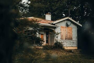 Das Holzhaus – Wohnen inmitten eines nachwachsenden Rohstoffs