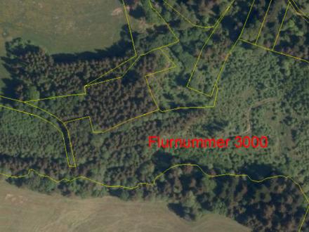 Mischwald in 94104 Witzmannsberg 2,82 ha / 1,95 / m² VB