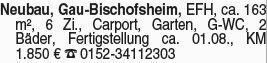 Haus in Gau Bischofsheim (55296)