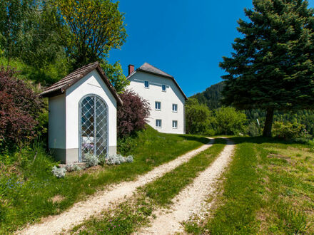 Südkärnten - Lavamünd: Sehr gepflegtes, landwirtschaftliches Anwesen
