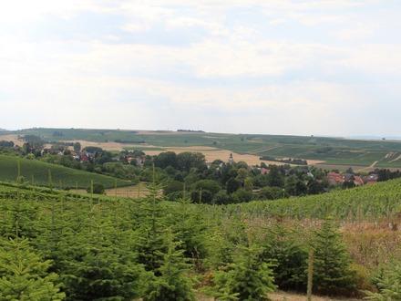 Abrissgrundstück – Hofreite im alten Ortskern von Saulheim