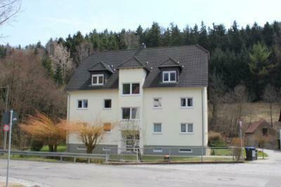 Schöne Dachterrassen-Wohnung am Naturschutzgebiet in Chemnitz-Kleinolbersdorf!