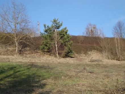 Laßnitzthal: reizvoll - idyllisch - Ganztagessonne