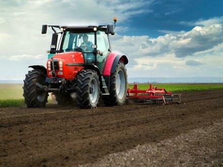 landwirtschaftliche Flächen in Linum