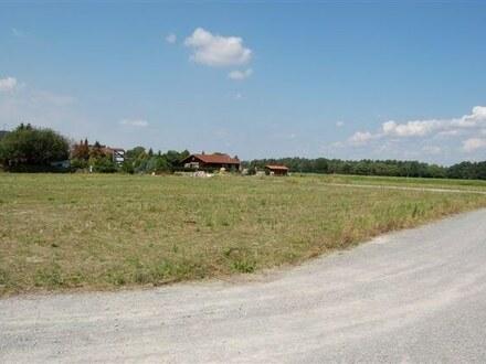 Bauplätze in waldreicher Umgebung in Steinhorst