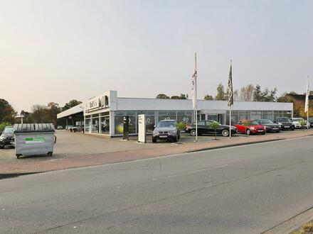 TT Immobilien bietet Ihnen: Autohaus mit Werkstatt!