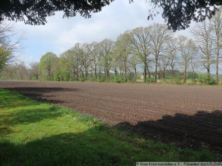 Rd. 4 ha Ackerland in der Wildeshauser Geest