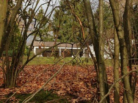 Grosszügiges Einfamilienhaus mit gepflegtem Garten