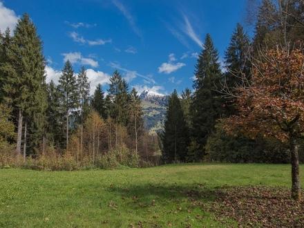 Am See - Kitzbühel