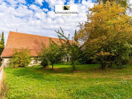 Böhmenkirch Groses Grundstück flexibel teilbar für 3-4 Häuser